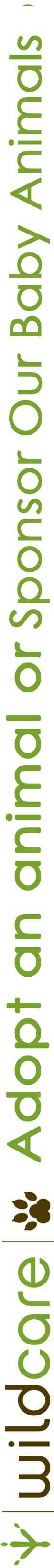 logo-+adopt+sponsor