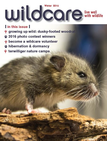 winter-2016-newsletter-cover