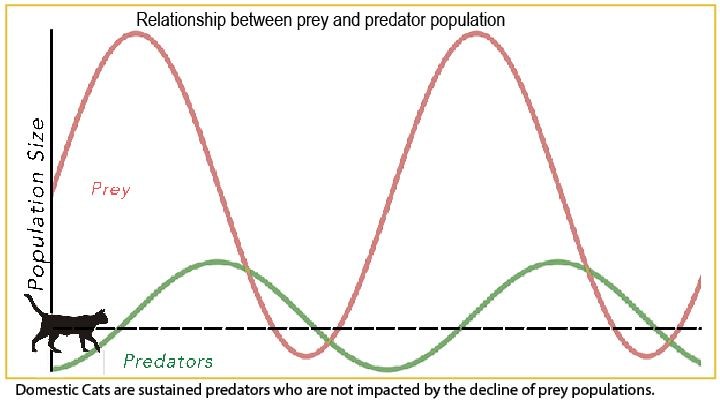 predator prey graph